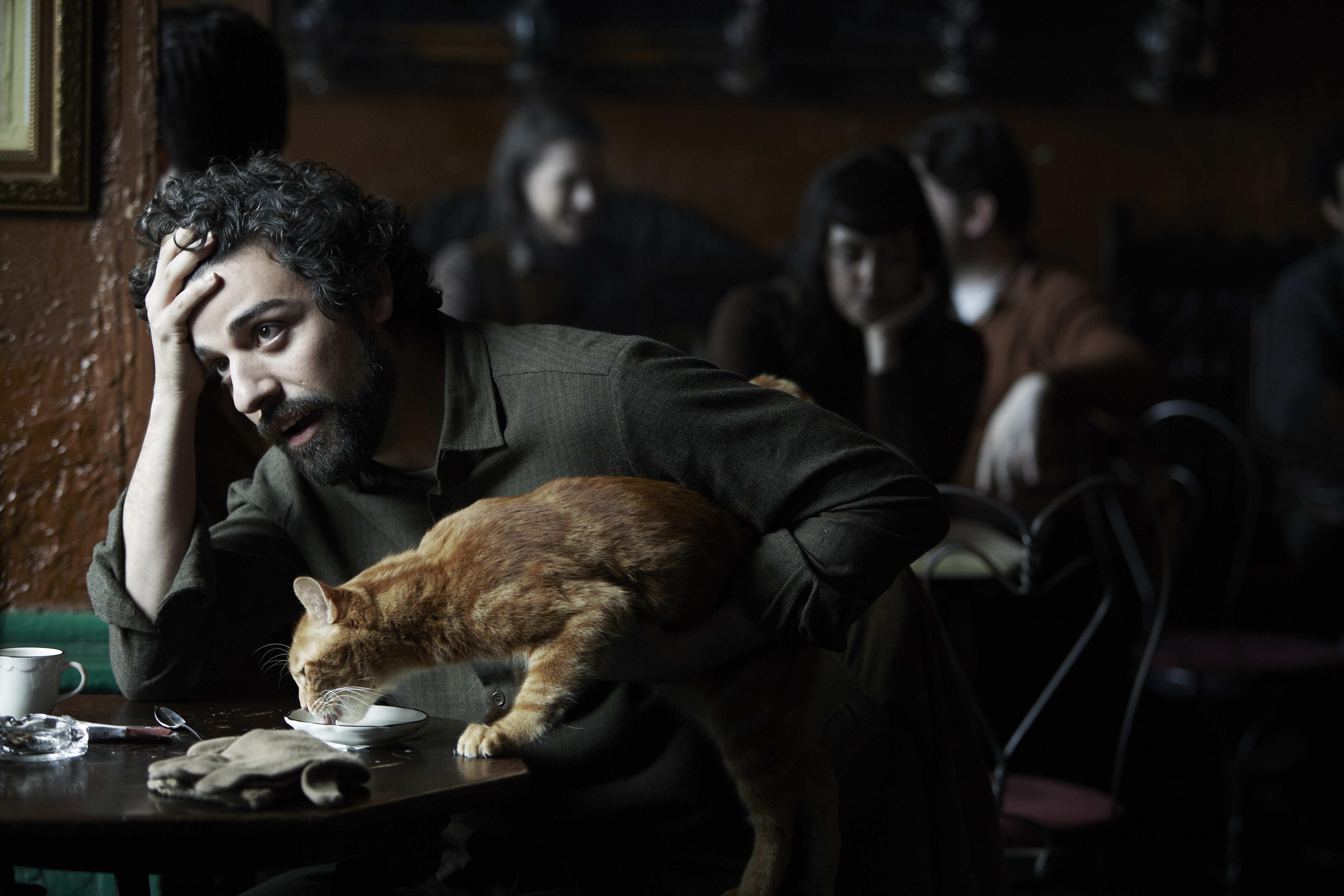inside-llewyn-davis-LARGE-cat