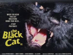 DVD-black-cat