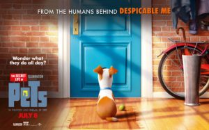 box-secret-life-of-pets