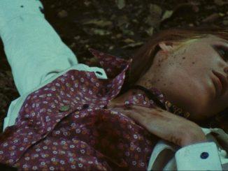 bloodstained-butterfly-body