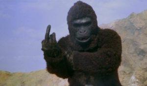 DVD-ape