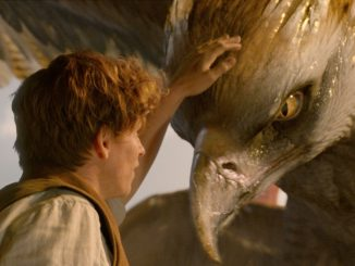 DVD-fantastic-beasts-giant-bird