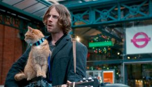 Street Cat Named Bob Cinema Tomorrow Which Cinema
