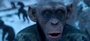 War-planet-of-ape-zahn-bad-monkey