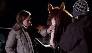 DVD-certain-women-stewart-horse